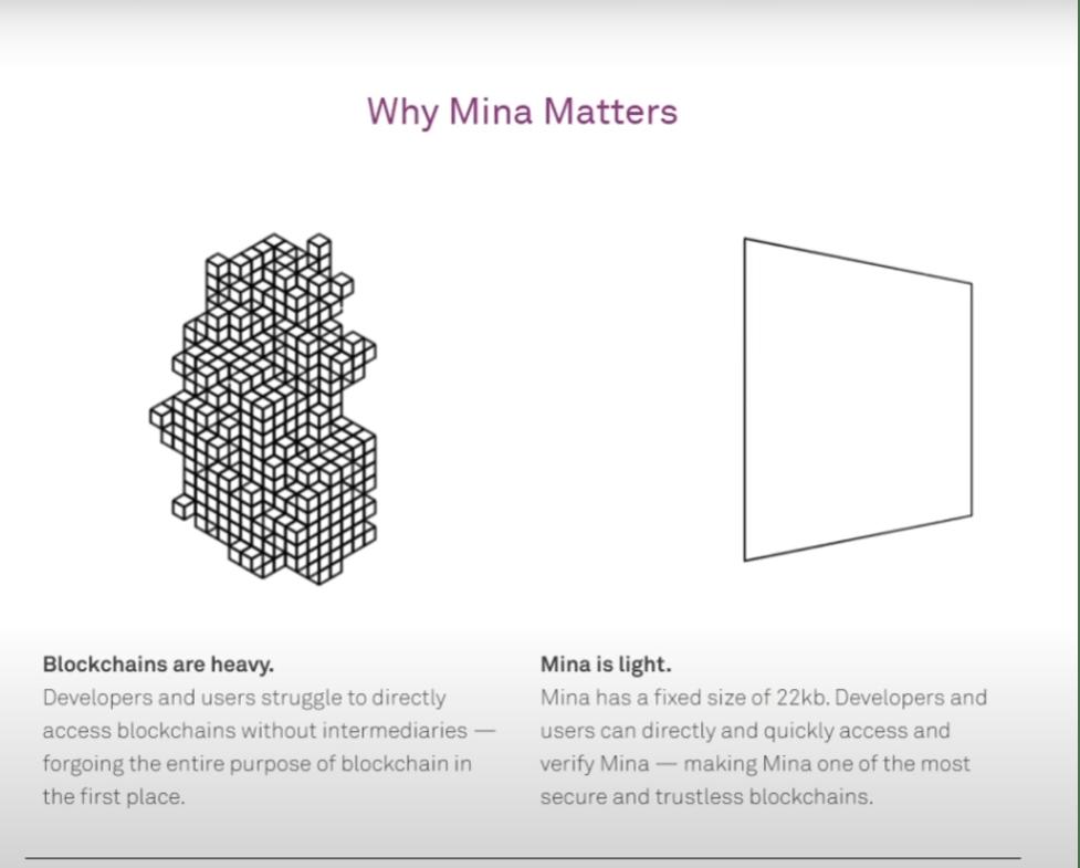 Mina Matters